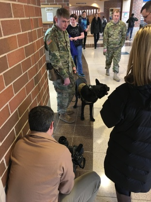 military-dog